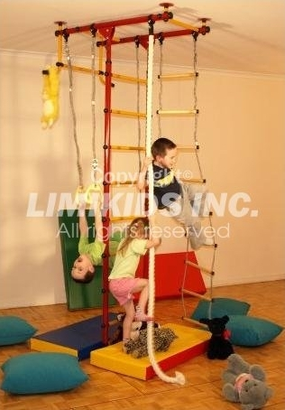 Limikids indoor home gym for kids toys and games for Basement jungle gym