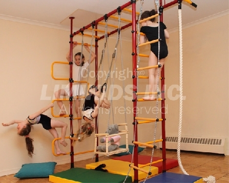 Limikids indoor home gym for kids kids and babies for Basement jungle gym